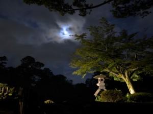 月夜の兼六園