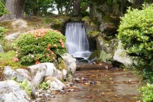 曲水の小滝